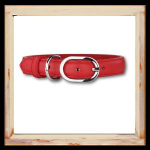 Collier pour Chihuahua rouge en cuir