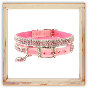 Collier Chihuahua rose chic