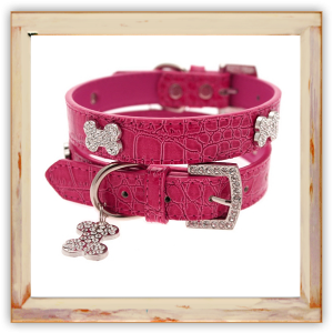 Collier Chihuahua rose