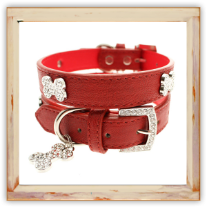 Collier Chihuahua rouge
