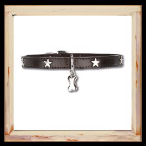 Collier petit Chihuahua noir avec étoiles