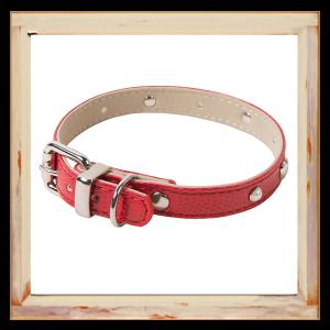 Collier pour chien python rouge